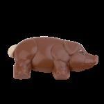 Piggy, flat