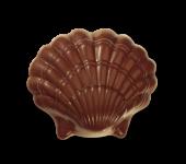 Muschel klein