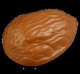 Walnuss-Praline