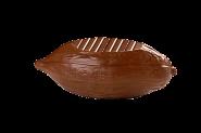Kakaobohne mit abgeflachtem Boden