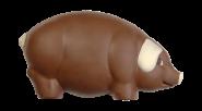 Mega-Glücksschwein