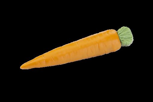 Karotte (verfügbar ab Januar)