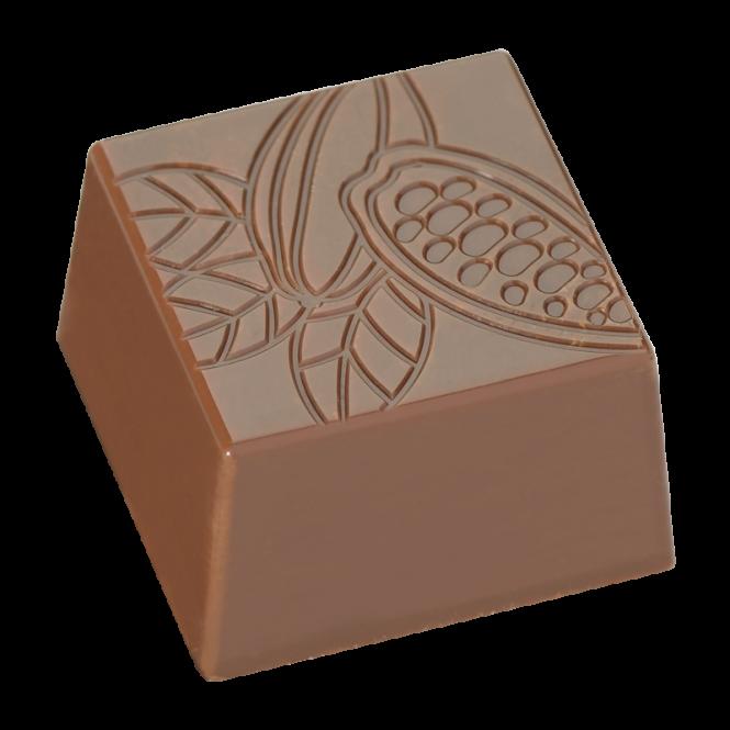 """Square praline """"cocoa pod"""""""